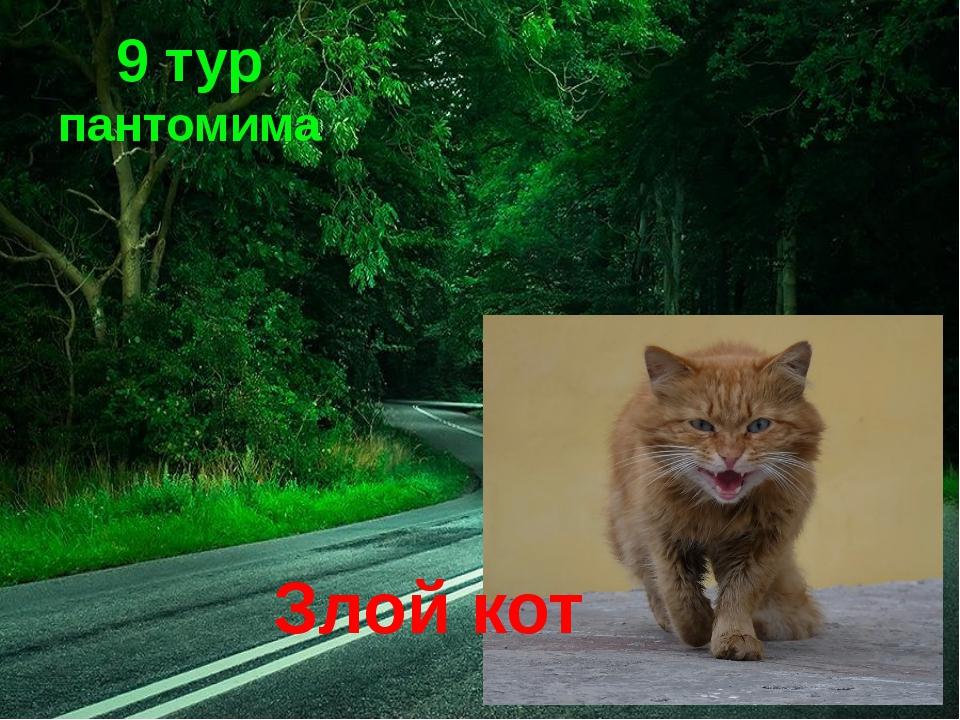 9 тур пантомима Злой кот