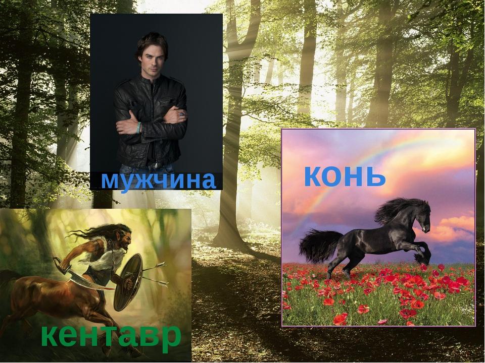 мужчина конь кентавр