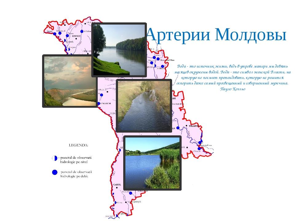 Артерии Молдовы Вода - это источник жизни, ведь в утробе матери мы девять мес...