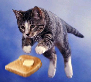 Кошка и бутерброд: Рис.1