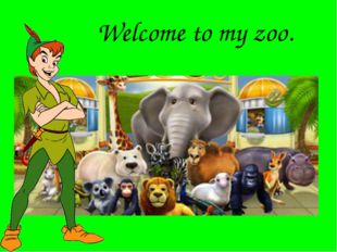 Welcome to my zoo.