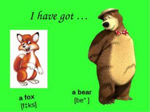 I have got … a fox [fɔks] a bear [beə]