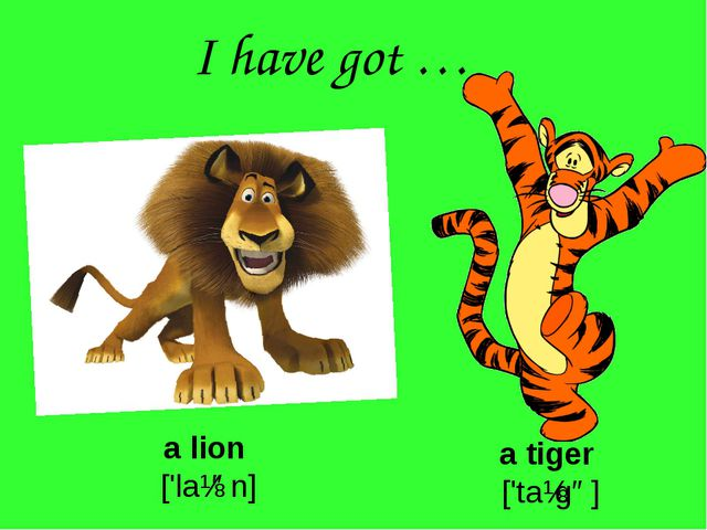I have got … a lion ['laɪən] a tiger ['taɪgə]