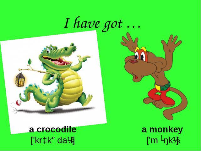 I have got … a crocodile ['krɔkədaɪl] a monkey ['mʌŋkɪ]