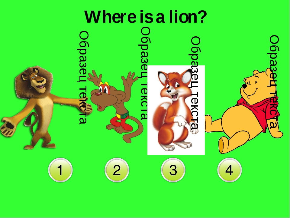 Where is a lion?