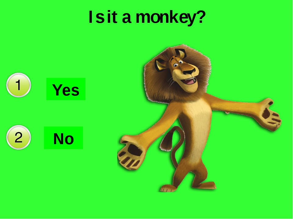 Is it a monkey? Yes No Да Нет