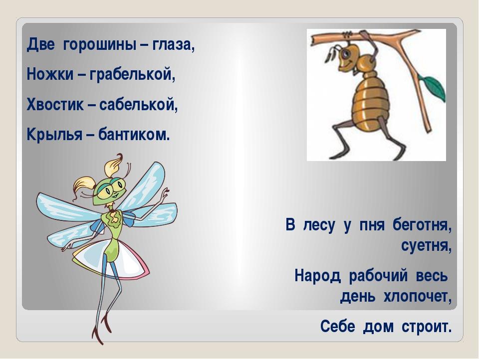 Две горошины – глаза, Ножки – грабелькой, Хвостик – сабелькой, Крылья – бант...