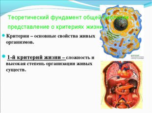 Теоретический фундамент общей биологии – представление о критериях жизни. Кри