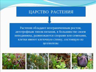 ЦАРСТВО РАСТЕНИЯ Растения обладают неограниченным ростом, автотрофным типом п