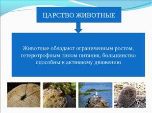 ЦАРСТВО ЖИВОТНЫЕ Животные обладают ограниченным ростом, гетеротрофным типом п