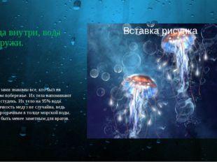 Вода внутри, вода снаружи. С медузами знакомы все, кто был на морском побереж