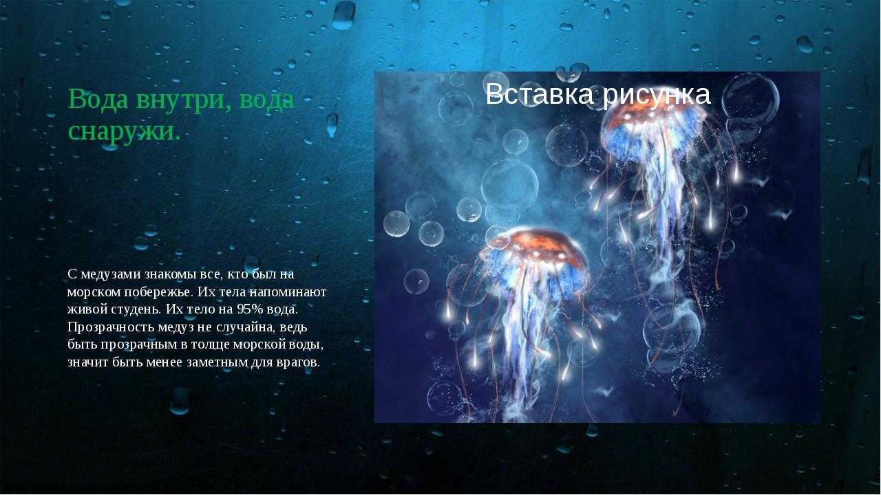 Вода внутри, вода снаружи. С медузами знакомы все, кто был на морском побереж...