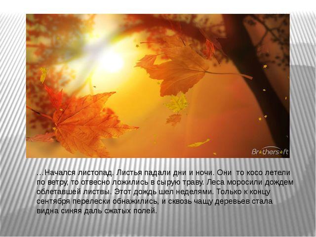 …Начался листопад. Листья падали дни и ночи. Они то косо летели по ветру, то...