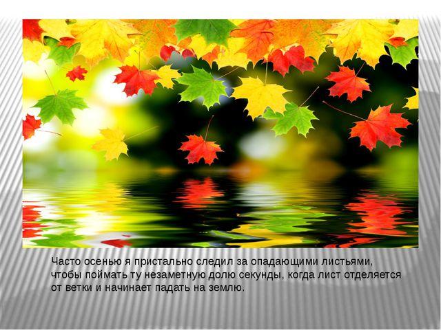 Часто осенью я пристально следил за опадающими листьями, чтобы поймать ту нез...