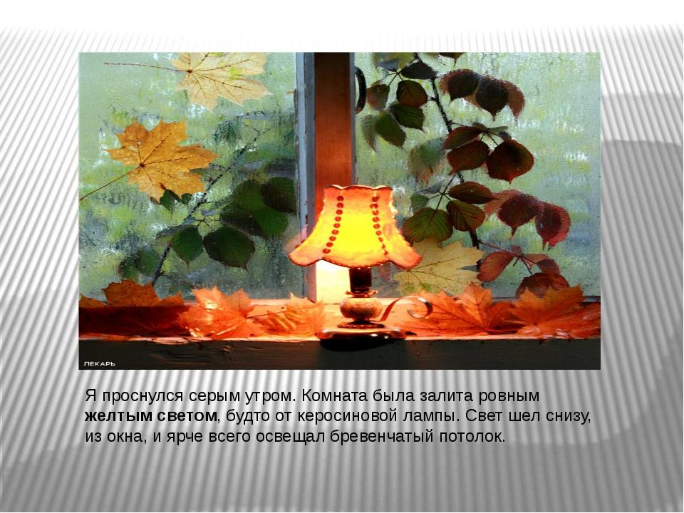 Я проснулся серым утром. Комната была залита ровным желтым светом, будто от к...