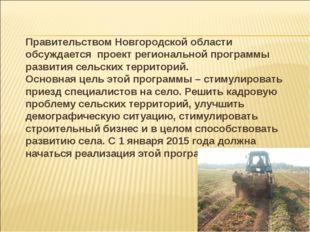 Правительством Новгородской области обсуждается проект региональной программ