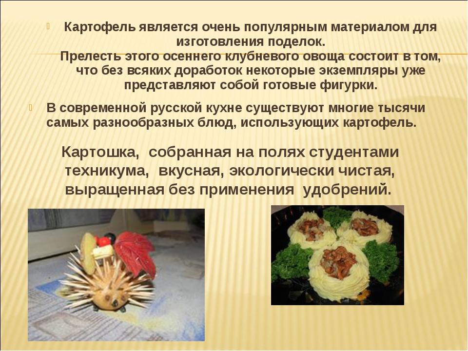 Картофель является очень популярным материалом для изготовления поделок. Прел...