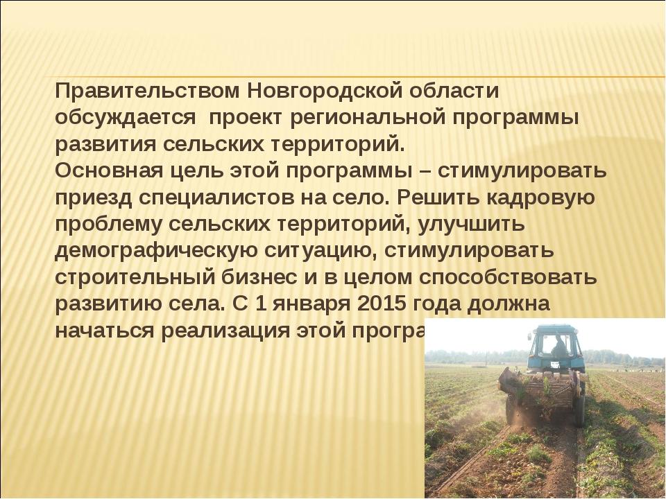 Правительством Новгородской области обсуждается проект региональной программ...