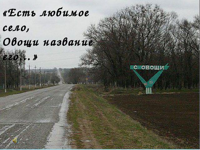 «Есть любимое село, Овощи название его…»