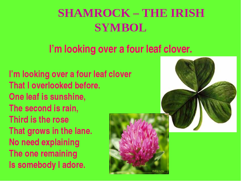 SHAMROCK – THE IRISH SYMBOL I'm looking over a four leaf clover. I'm looking...