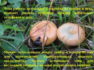 Тема работы актуальна: батарейка из грибов и ягод, поможет решить проблему за