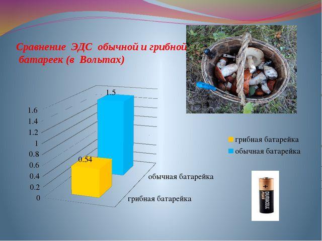 Сравнение ЭДС обычной и грибной батареек (в Вольтах)