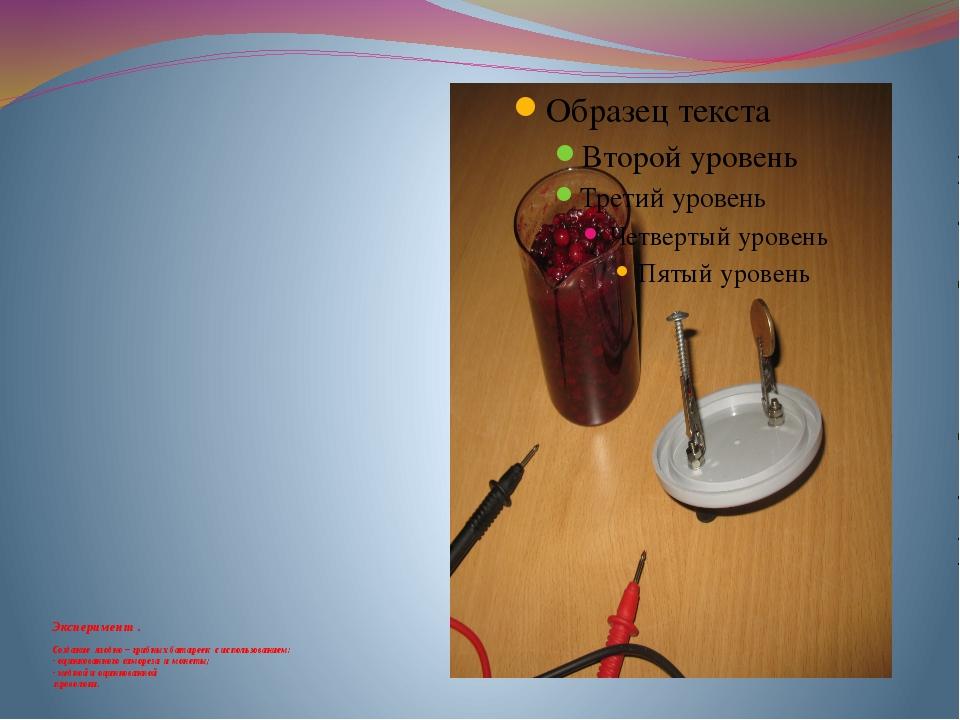 Эксперимент . Создание ягодно – грибных батареек с использованием: - оцинков...
