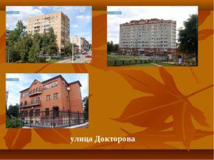 улица Докторова