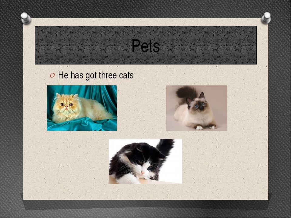 Pets He has got three cats