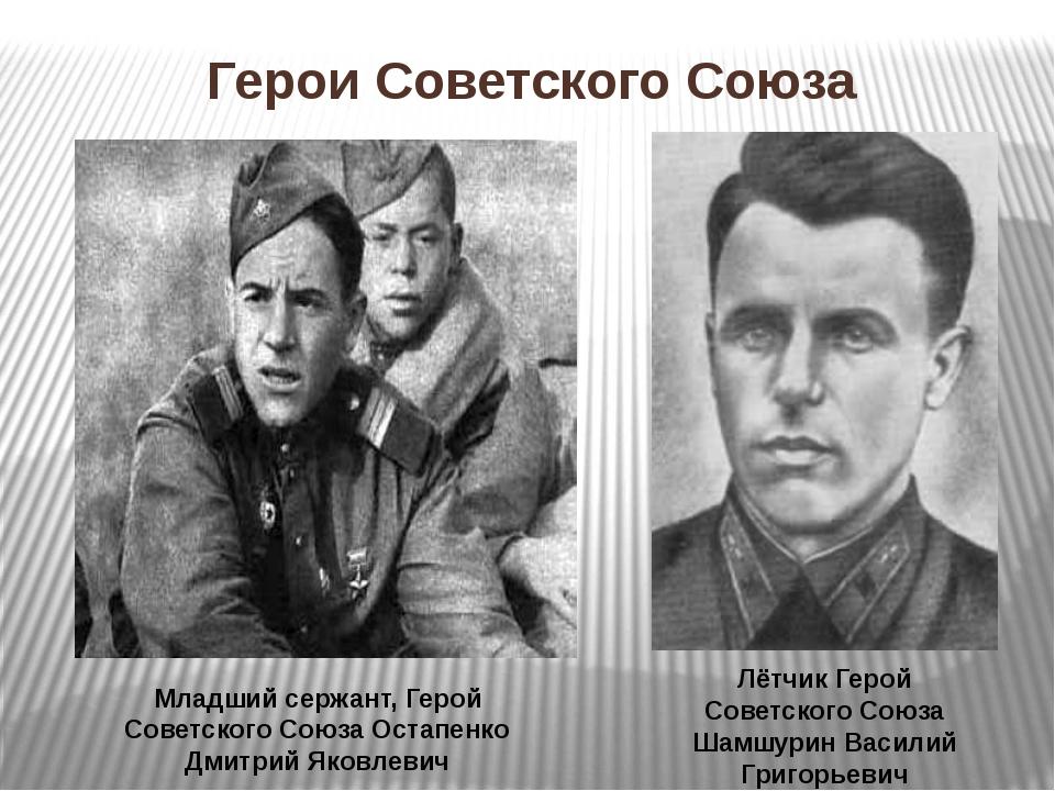 Младший сержант, Герой Советского Союза Остапенко Дмитрий Яковлевич Лётчик Ге...