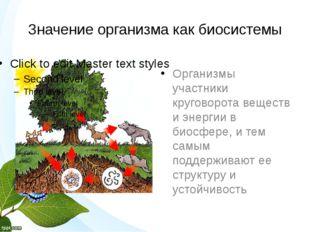 Значение организма как биосистемы Организмы участники круговорота веществ и э