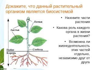 Докажите, что данный растительный организм является биосистемой Product A Fea