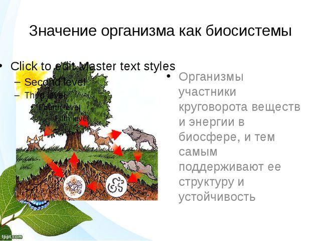 Значение организма как биосистемы Организмы участники круговорота веществ и э...