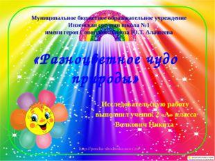 «Разноцветное чудо природы» Исследовательскую работу выполнил ученик 2 «А» кл