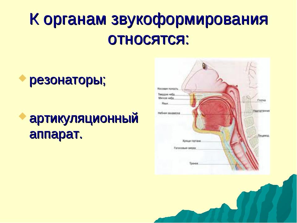 К органам звукоформирования относятся: резонаторы; артикуляционный аппарат.