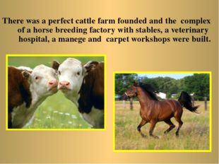 There was a perfect cattle farm founded and the complex of a horse breeding f