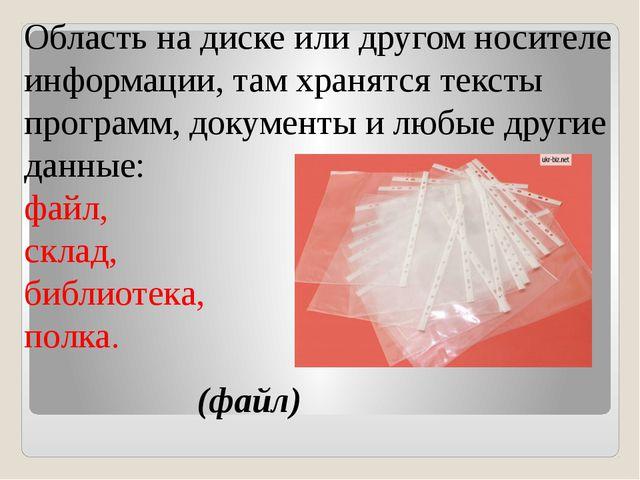 Область на диске или другом носителе информации, там хранятся тексты програм...