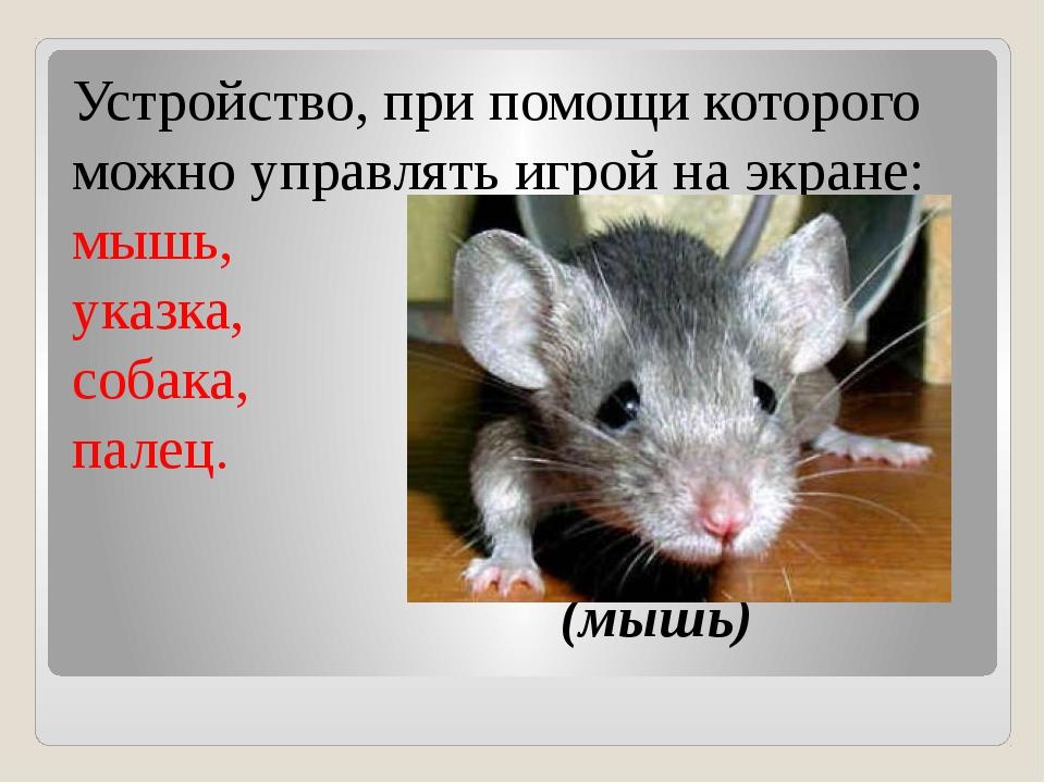 Устройство, при помощи которого можно управлять игрой на экране: мышь, указк...