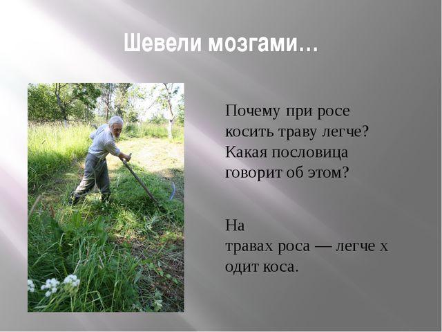 Шевели мозгами… Почему при росе косить траву легче? Какая пословица говорит о...
