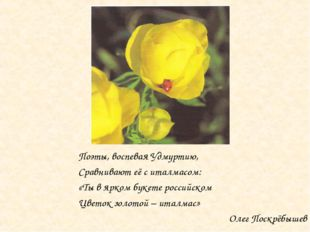 Поэты, воспевая Удмуртию, Сравнивают её с италмасом: «Ты в ярком букете росси