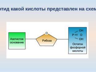 Нуклеотид какой кислоты представлен на схеме: