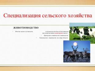 Специализация сельского хозяйства Молочно-мясное скотоводство. (в Архангельск
