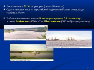 * Леса занимают 71 % территории (около 10 млн. га) Одно из первых мест на евр