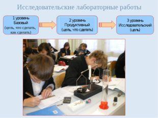 Исследовательские лабораторные работы 1 уровень Базовый (цель, что сделать, к