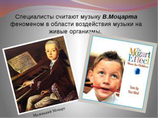 Специалисты считают мyзыкy В.Моцаpта феноменом в области воздействия музыки