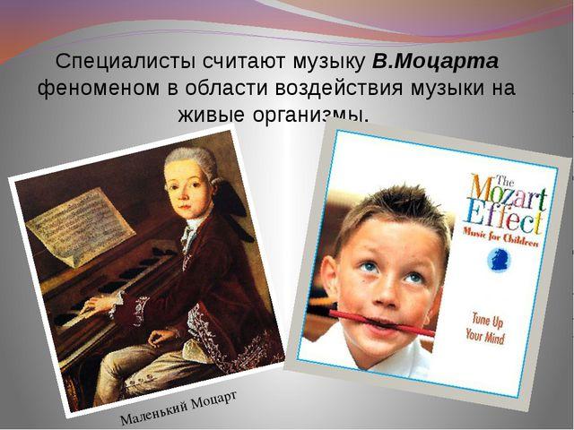 Специалисты считают мyзыкy В.Моцаpта феноменом в области воздействия музыки...