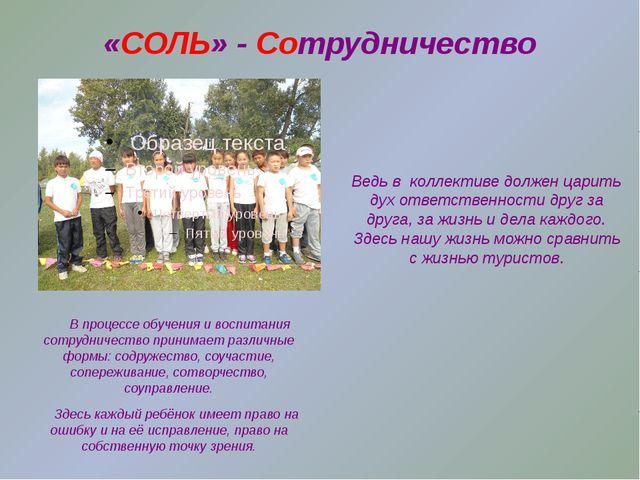 «СОЛЬ» - Сотрудничество В процессе обучения и воспитания сотрудничество прини...
