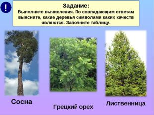 Задание: Выполните вычисления. По совпадающим ответам выясните, какие деревья