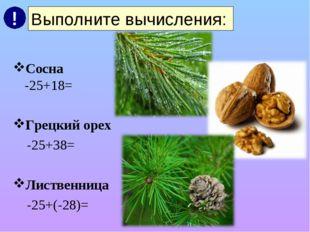 Сосна -25+18= Грецкий орех -25+38= Лиственница -25+(-28)= Выполните вычислен