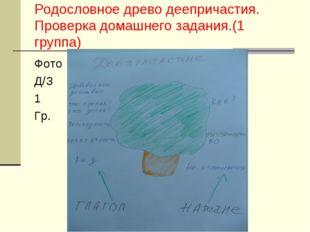 Родословное древо деепричастия. Проверка домашнего задания.(1 группа) Фото Д/